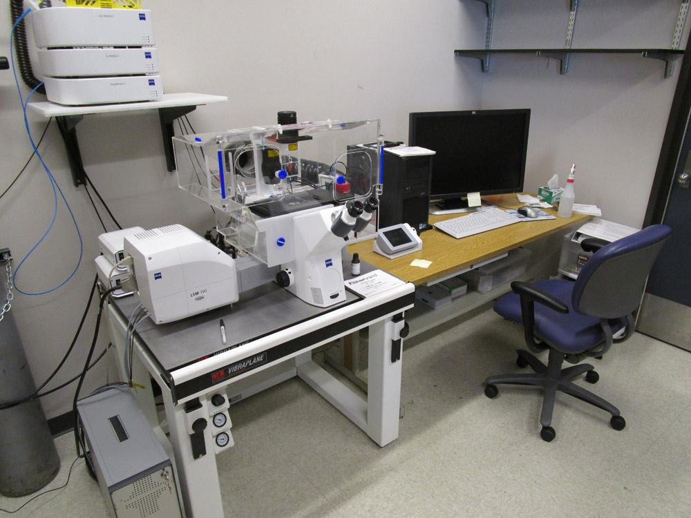 Zeiss LSM 700 laser scanning confocal microscope